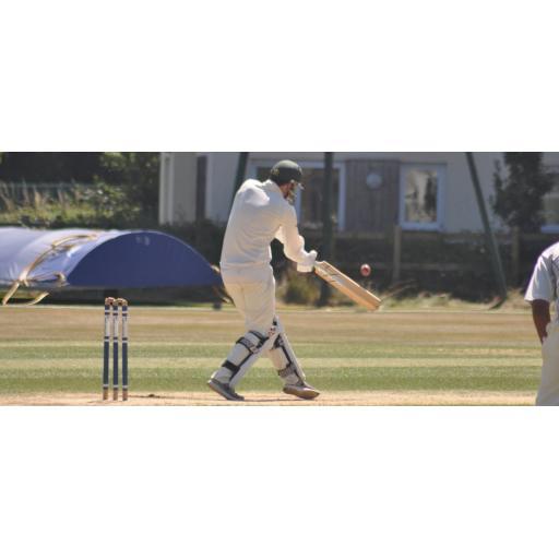 Bilsington vs Saturday XI - 16th June